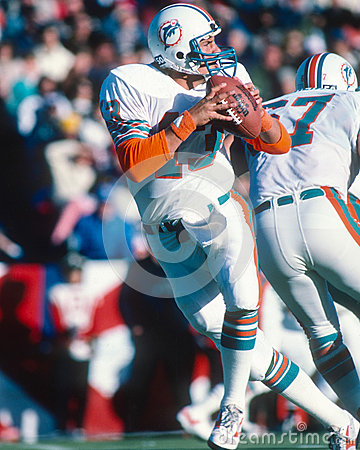Free Dan Marino Miami Dolphins Stock Photo - 45540360