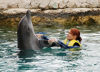 Dancing With Dolphins