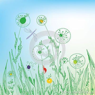 Dandelion and grass field