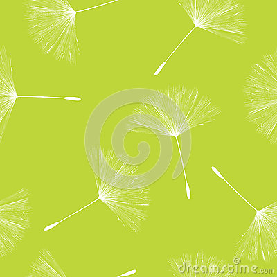 Dandelion seeds pattern