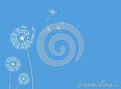 Dandelions greeting card blue