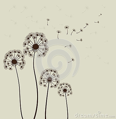 Free Dandelions. Vector Stock Images - 29032224