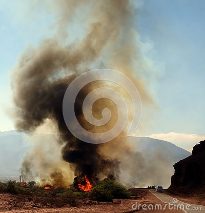 Free Danger On The Road - Cafayate, North Of Argentina Royalty Free Stock Images - 130574089