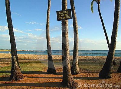 Dangers of Kauai beaches