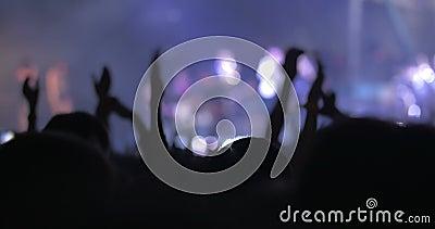 Dankbares und aufgeregtes Publikum auf dem Konzert stock video