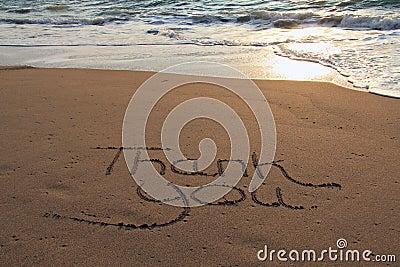 Danke auf den Strand zu setzen