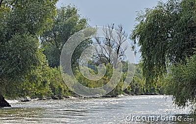 Danube delta channel