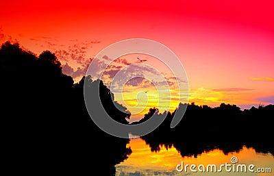 Danube Delta vivid sunset