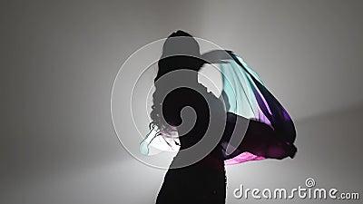 Danza de vientre con el baile multicolor de las tartas del mantón Sihouette Fume el fondo Cámara lenta Cierre para arriba almacen de metraje de vídeo