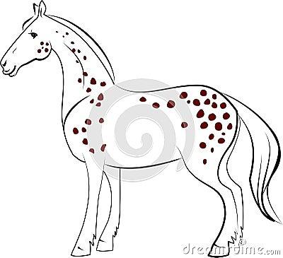 Dapple лошадь