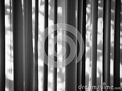 Dappled Lines