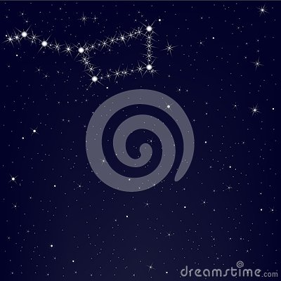 Dark Blue Sky With Constellation. Vector