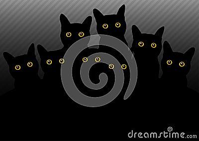 Dark cats