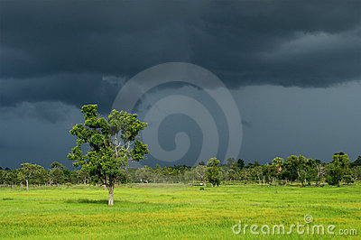 Dark Cloud of Rainy Season