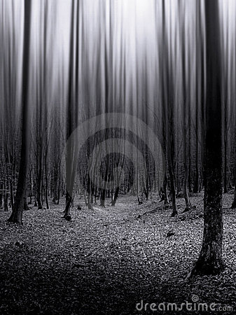 Dark forest with infinite trees