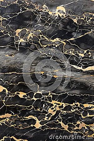 Free Dark Marble With Golden Veins Stock Image - 13869781
