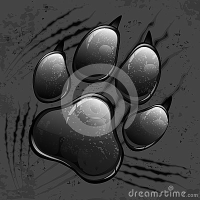 Dark paw print and scratches