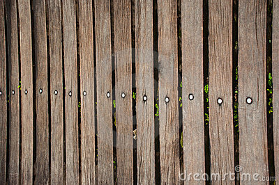 Dark real wood fence
