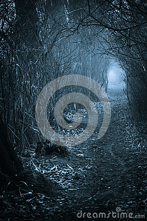 Free Dark Spooky Passage Through Royalty Free Stock Image - 39180106