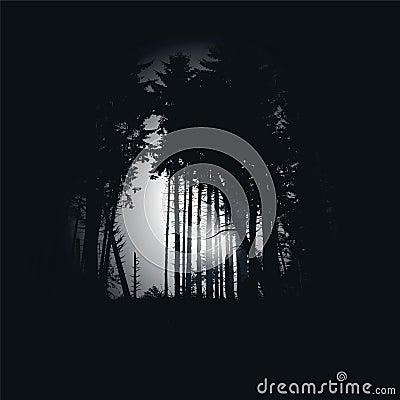 Dark spruce forest at night
