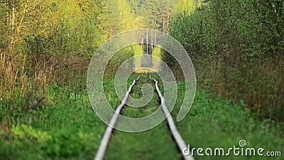 Das alte Gleis Verlassene Station Überwucherte Bahnen stock footage