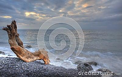 Das Nachtmeer und -bauholz