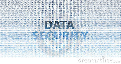 DATA SECURITY information technology issues