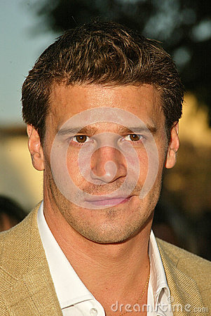 David Boreanaz Editorial Stock Photo