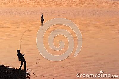 Dawn Catch
