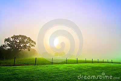 countryside dawn