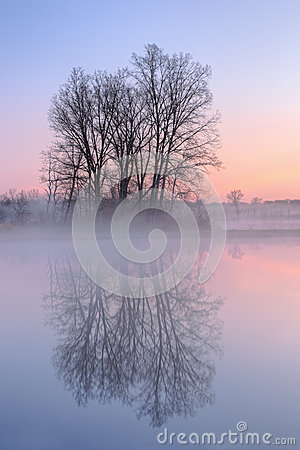 Dawn, Jackson Hole Lake
