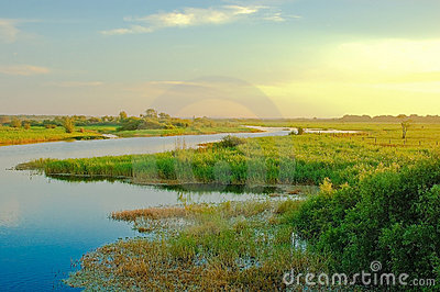 Dawn on the Myakka River