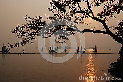 Sunset in Turtle-head Peninsula Park Editorial Stock Photo