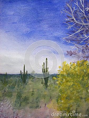 A Day in the Arizona Desert