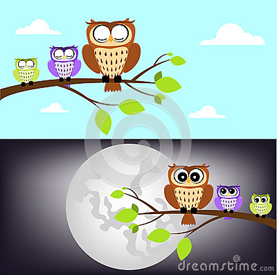 Day and night owl