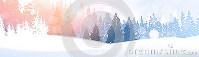 Day In Winter Forest Glowing Snow Under Sunshine Woodland Landscape White Snowy Pine Tree Woods Background Vector Illustration