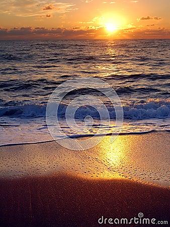 Free Daybreak In Palm Beach, Florida Stock Photo - 509110