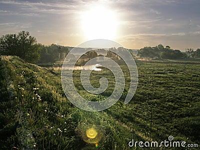Daybreak Meadow