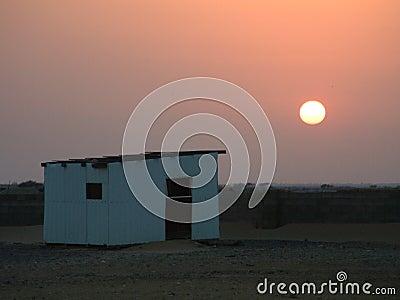 Dazzeling desert