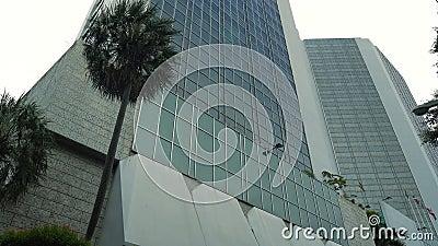 De architectuur van een lange glaswolkenkrabber en een palm voor een collectief gebouw stock video