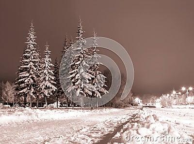 De avond van de winter.