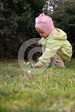 De baby van de lente