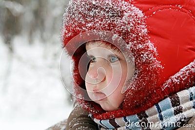 De baby van de winter