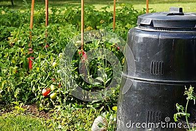 De bak van het compost en moestuin