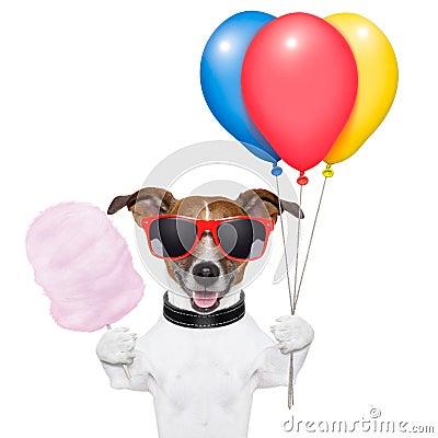 De ballons en de gesponnen suiker van de hond