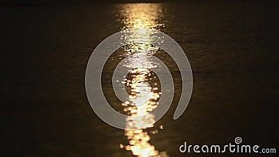 De bezinningsfonkelingen van de de zomerzon in het water door de overzeese kusten stock footage