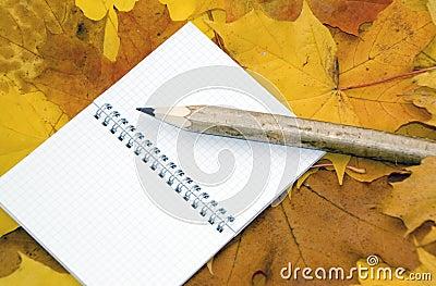 De bladeren, het notitieboekje en de pen van de herfst