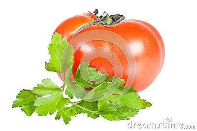 De bladeren van de tomaat en van de peterselie