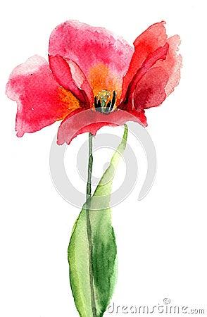 De bloem van de tulp