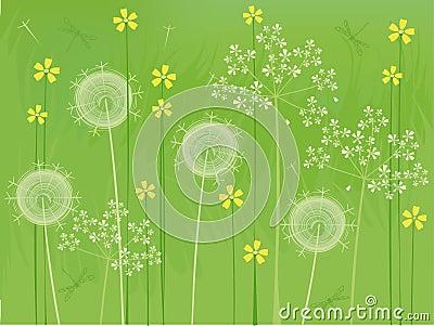 De bloemenachtergrond van de zomer